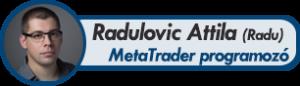 Radulovic Attila
